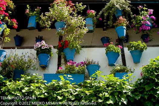 パティオの花々(アンダルシア地方・コルドバ):パティオには色とりどりの花が飾られ、まるで夢のような空間である  723