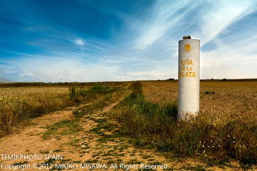 絹の道:サンティアゴ・デ・コンポステーラの巡礼路の一つ(カスティージャ・イ・レオン地方サモラ)  878
