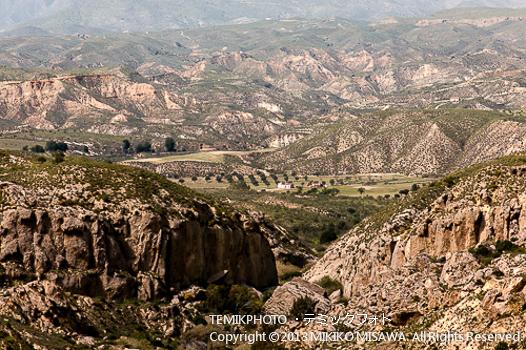 アルメリアの内陸地・砂漠地帯 (アンダルシア地方・アルメリア)  1088