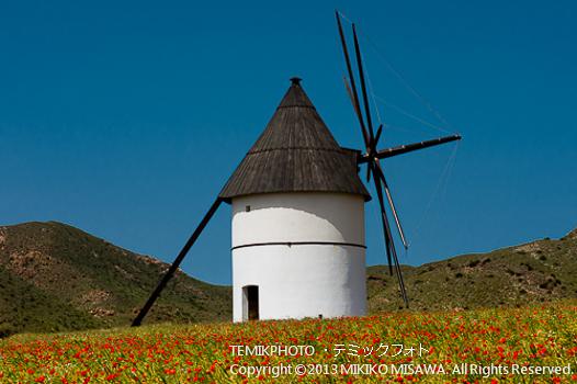水揚げ風車 (アンダルシア地方・アルメリア)  541