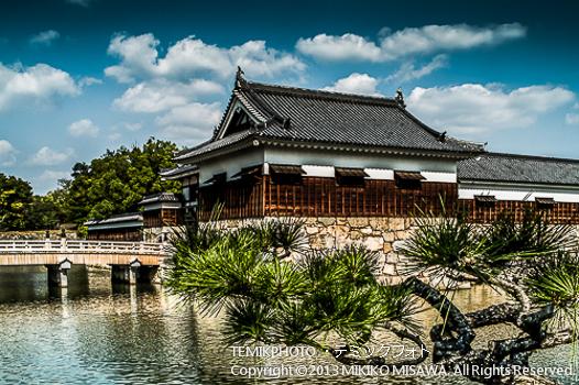 広島城 外堀(広島)  1359