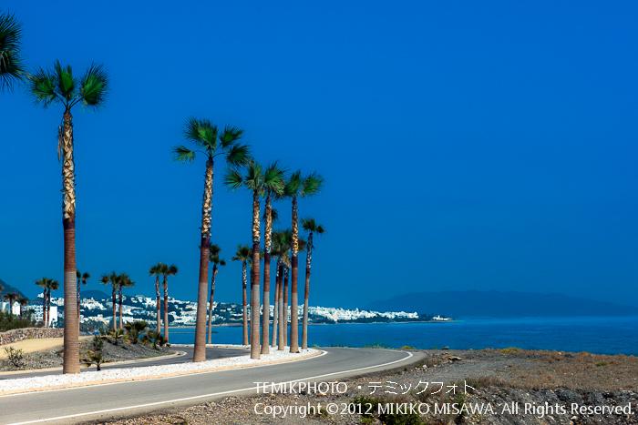 椰子の並木のある海岸通り(アンダルシア地方・モハカール)  4009