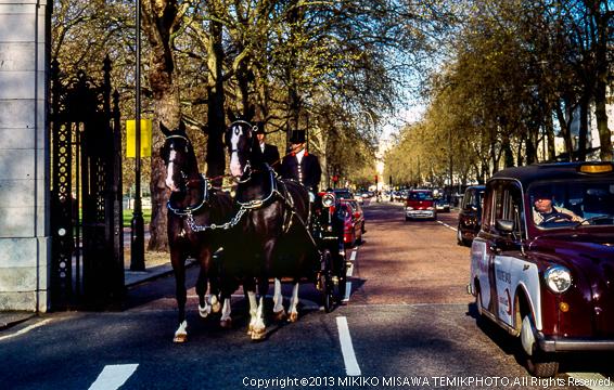 王宮前にて (ロンドン)  2398