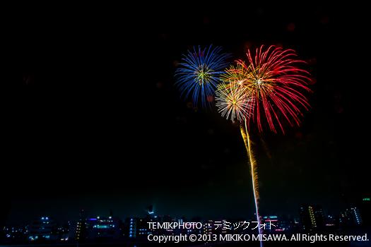 花火 (東京)  4838