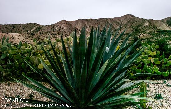 ミニハリウッド 映画村 タベルナス砂漠地帯(アンダルシア地方・アルメリア)  3827