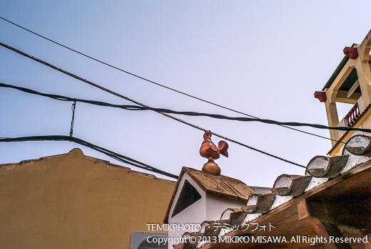 屋根の上の雄鳥・ソルバス村 (アンダルシア地方・アルメリア)  3518