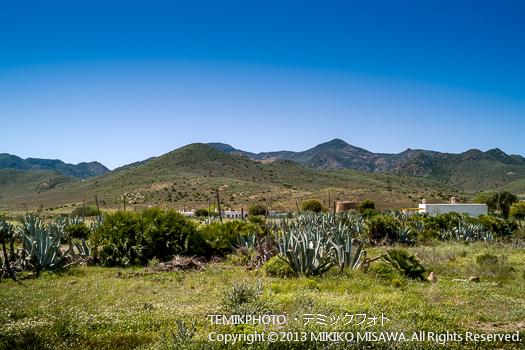 サン・ホセ村 (アンダルシア地方・アルメリア)  533