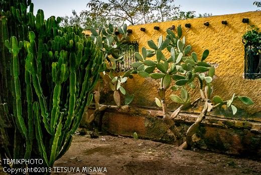 ミニハリウッド 映画村 タベルナス砂漠地帯(アンダルシア地方・アルメリア)  3773