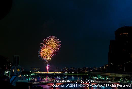 花火 (東京)  4812