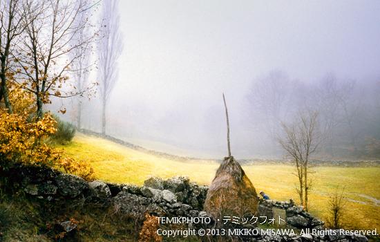 Blog-11-129