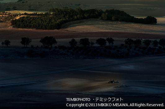 Blog-13-199 明け方のトラクタ トレド (カスティージャ・ラ・マンチャ地方・トレド)  10095