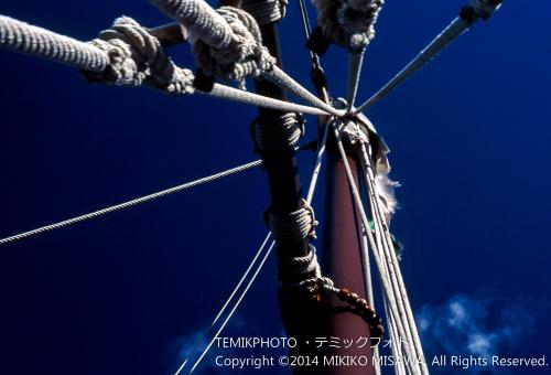 帆綱  15508
