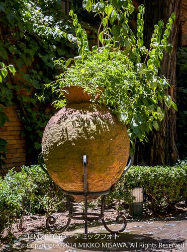 ソロージャ美術館 庭園  15423