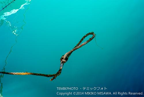 海中のロープ  (ハベア港)  15214