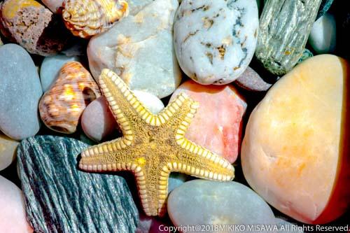 宝石色の玉石 (アンダルシア地方・アルメリア)  1096