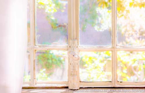 窓(マドリード)  2373