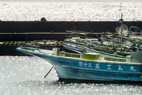 しらす漁の船:葉山・真名瀬柴崎港  28873