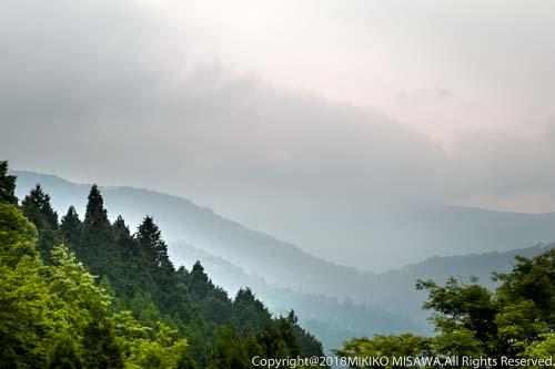 深山:神奈川県・丹沢大山国定公園  28875
