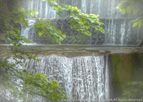滝:神奈川県・丹沢大山国定公園  28885
