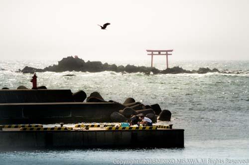 森戸大明神の鳥居:森戸大明神は、鎌倉幕府を開いた源頼朝公によって建立されたと伝えられている  28945